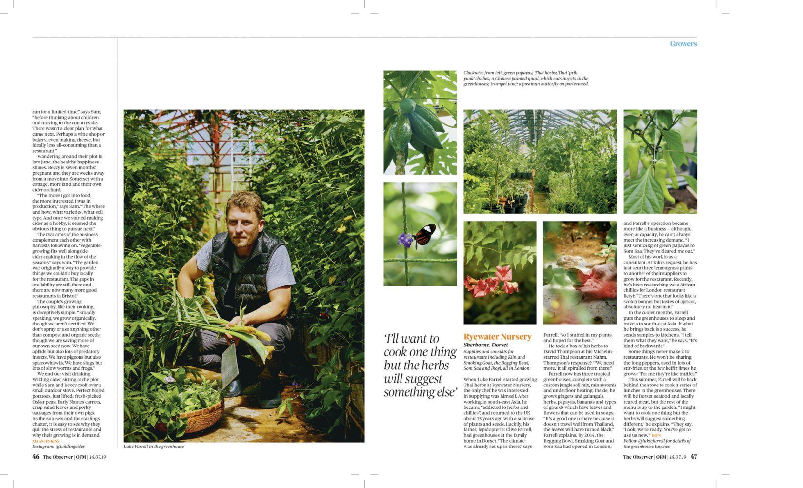 Gardeners' worlds